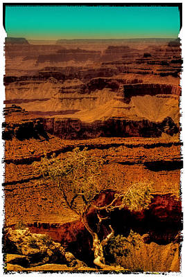 Photograph - The Grand Canyon Vintage Americana Vi by David Patterson