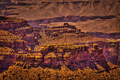 Photograph - The Grand Canyon Xiv by David Patterson