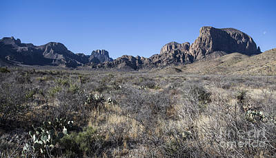 Photograph - The Grand Chisos by Amber Kresge