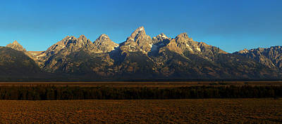 Teton Photograph - The Grand Teton by David Andersen