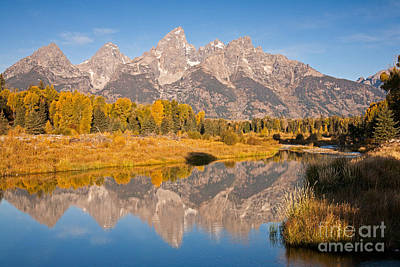 Photograph - The Grand Tetons At Schwabacher Landing Grand Teton National Park by Fred Stearns