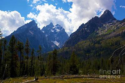 Photograph - The Grand Tetons  by Terry Horstman