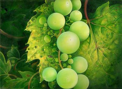 The Grapes Art Print by Anna Ewa Miarczynska