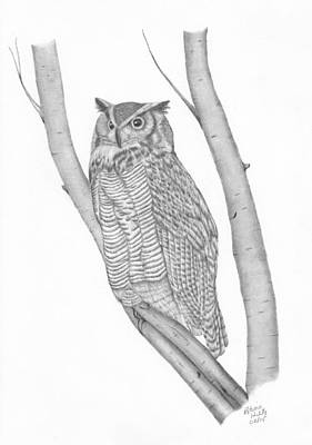 Drawing - The Great Horned Owl Watches by Patricia Hiltz