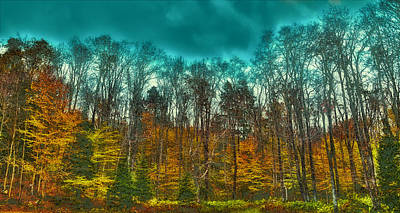 Corporate Art Photograph - The Green Bridge Road In Autumn by David Patterson