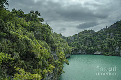 The Green Laguna Print by Michelle Meenawong