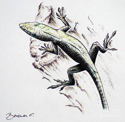 Drawing - The Green Lizard by Katharina Filus