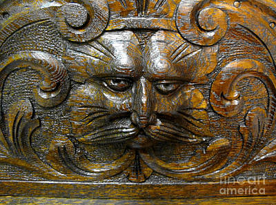 Photograph - The Green Man by Ethna Gillespie