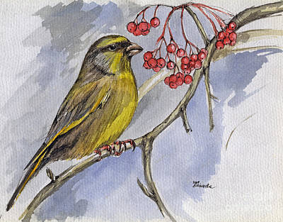The Greenfinch Art Print by Angel  Tarantella