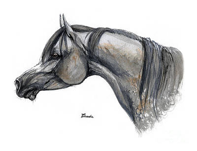 The Grey Arabian Horse 11 Original by Angel  Tarantella