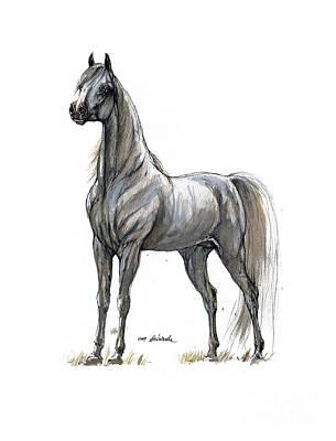 Horse Drawing - the Grey arabian horse 7 by Angel  Tarantella