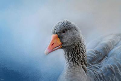 Genus Photograph - The Greylag Goose by Jai Johnson