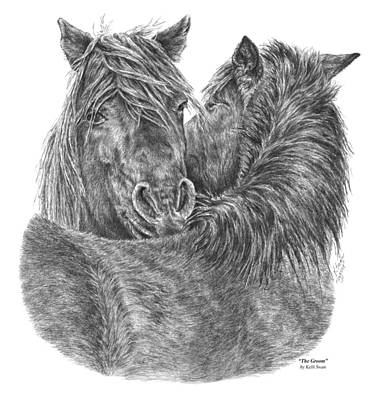 Drawing - The Groom - Chincoteague Pony Print by Kelli Swan