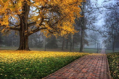 University Of Virginia Photograph - The Grounds by Malcolm MacGregor