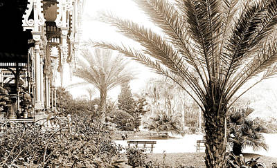 Tampa Bay Drawing - The Grounds Of Tampa Bay Hotel, Tampa, Fla, Hotels, Palms by Litz Collection