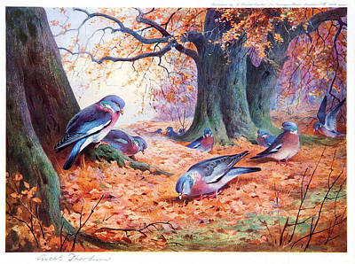 Beautiful Scenery Painting - The Grouses by Celestial Images