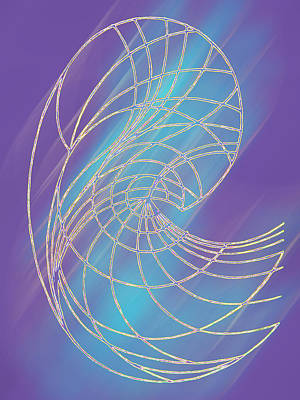 Fractals Digital Art Drawing - The Hairs Of The Time by Nevena Nikolova
