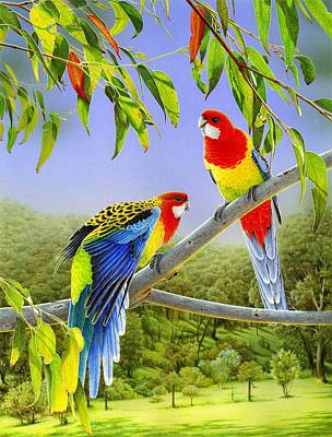 Painting - The Happy Couple - Eastern Rosellas  by Frances McMahon