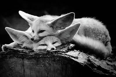 Tuscany Italy Photograph - The Happy Couple by Inna Blar