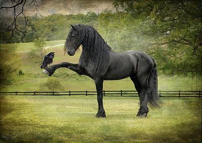 Black Friesian Photograph - The Harbinger by Fran J Scott