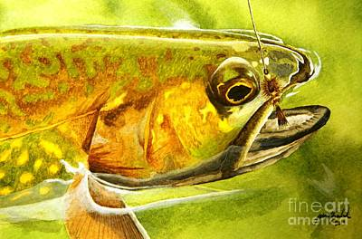Fishing Flies Painting - The Hare And The Trout by Jason Bordash