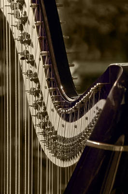 Photograph - The Harp by Celso Bressan