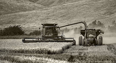 Photograph - The Harvest by Gary Neiss