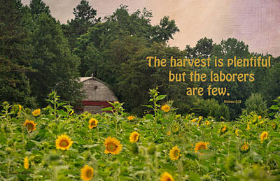The Harvest Is Plentiful Art Print