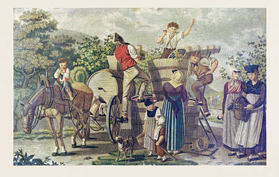 The Harvesting Of Wine Grapes, 19th Century Engraving, Time Art Print