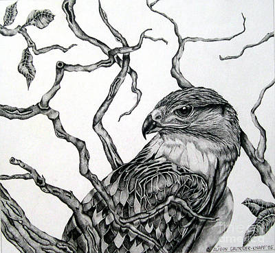 Art Print featuring the drawing The Hawk by Alison Caltrider