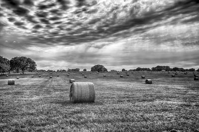 Photograph - The Hay Bails by Howard Salmon