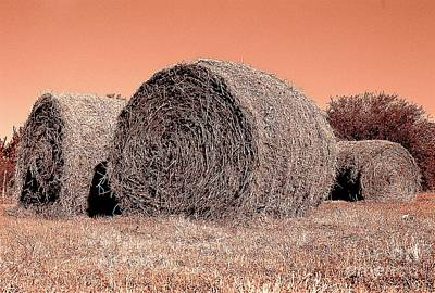 Photograph - The Hay Roll by Michael Hoard