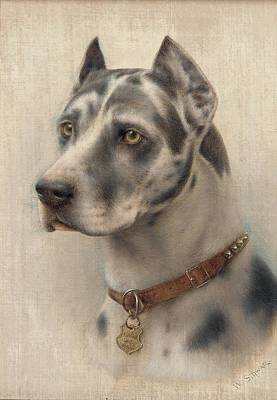 Doberman Painting - The Head Of A Doberman by Wilhelm Schwar