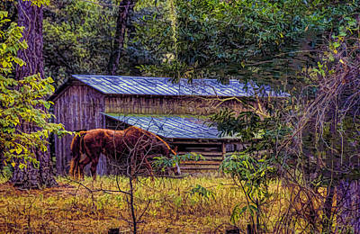 Photograph - The Horse And Barn by Lewis Mann