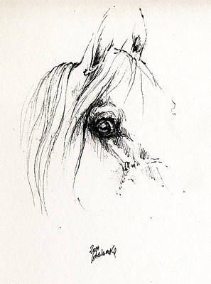 The Horse Eye 2014 05 16 Original by Angel  Tarantella