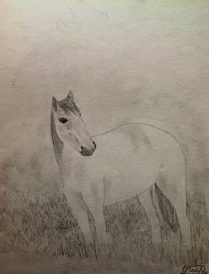Drawing - The Horse by Noah Burdett