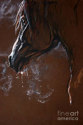 The Horse Portrait Print by Angel  Tarantella