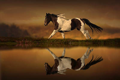 Running Horse Digital Art - The Horse's Journey by Jennifer Woodward