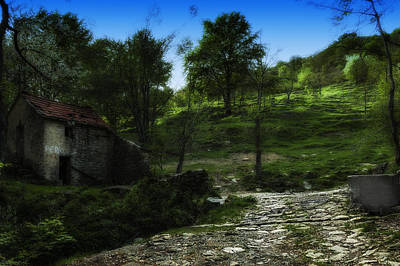 Photograph - The House Of The Rising Path by Enrico Pelos