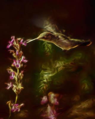 Digital Art - The Hummingbird Digital Art by Ernie Echols