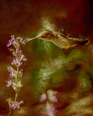 Digital Art - The Hummingbird Dp by Ernie Echols