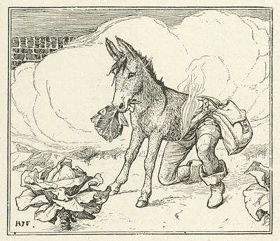 Cabbage Drawing - The Hunter Is Transformed Into  A Donkey by Mary Evans Picture Library