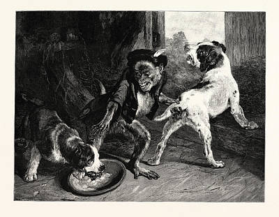 Puppy Drawing - The Intruding Puppies by English School