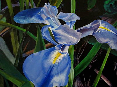 Painting - The Iris by John  Duplantis