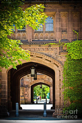 Photograph - The Ivy Campus - Princeton by Colleen Kammerer