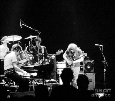 Jerry Garcia Band Photograph - The Cats Down Under The Stars by Susan Carella