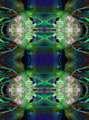 Etheric Digital Art - The Keepers Of The Sacred Code by Marie-Louise Svensson