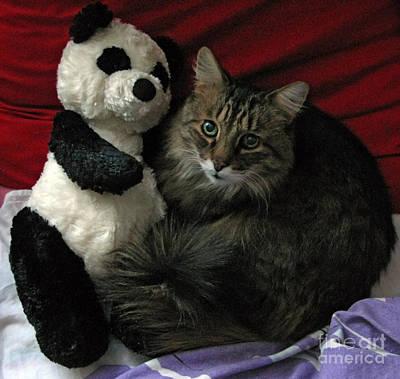 Photograph - The King Kitty And Panda 01 by Ausra Huntington nee Paulauskaite