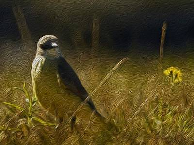 The Kingbird And The Flower Art Print by Ryker Vorton