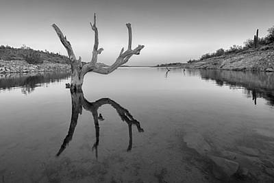 Photograph - The Kings Hand 1 Black And White by Scott Campbell